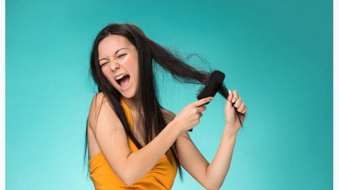 7 Obat Tradisional Ampuh Atasi Rambut Rontok, Tanpa Bahan Kimia dan Aman untuk Kulit Kepala