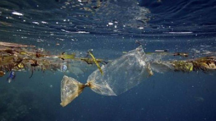 Peneliti LIPI Beberkan Dampak Mengerikan dari Pencemaran Sampah Plastik di Lautan