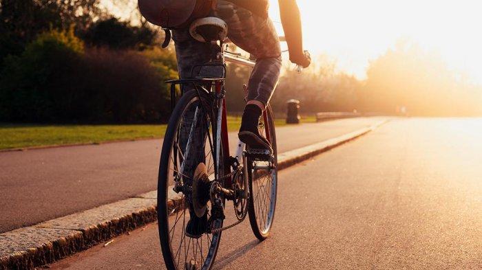 Daftar Harga Sepeda Lipat Mulai Rp 1,7 Jutaan hingga Rp 35 Juta Berbagai Merek