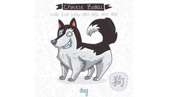 Ilustrasi Shio Anjing. Shio Anjing penuhilah kebutuhan mental dengan sedikit narsis di depan orang.