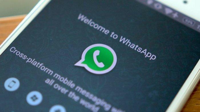 Cara Bagikan dan Simpan Kontak WhatsApp Melalui QR Code, Tanpa Ribet!