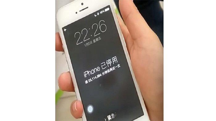 Iphone dan Android Ini Tak Bisa Buka WhatsApp Lagi Tahun 2021, Jenis Apa Saja? Cek di Sini