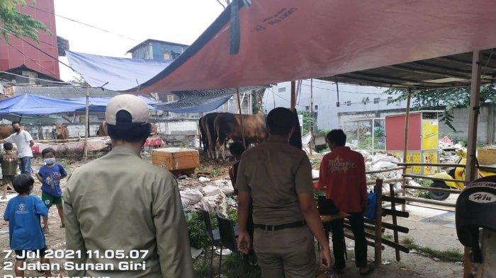 Satpol PP Jakarta Timur Bakal Tutup Penampungan Hewan Kurban di Zona Merah Penyebaran Covid-19