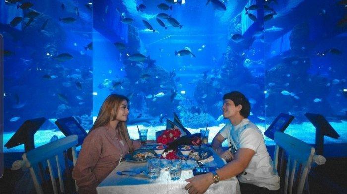 Mau Makan Romantis Bareng Pasangan Berlatar Hiu? Yuk ke Sini Saja