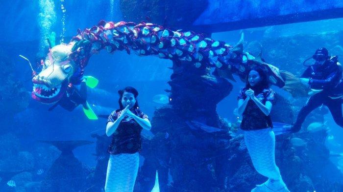 Jakarta Aquarium & Safari (JAQS) menyuguhkan atraksi liong bawah air pada perayaan Imlek tahun ini