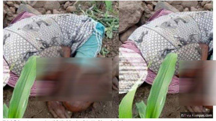 Diduga Kelaparan Kakek di Sulsel Ditemukan Tewas di Tumpukan Batu, Pihak Keluarga Beberkan Faktanya
