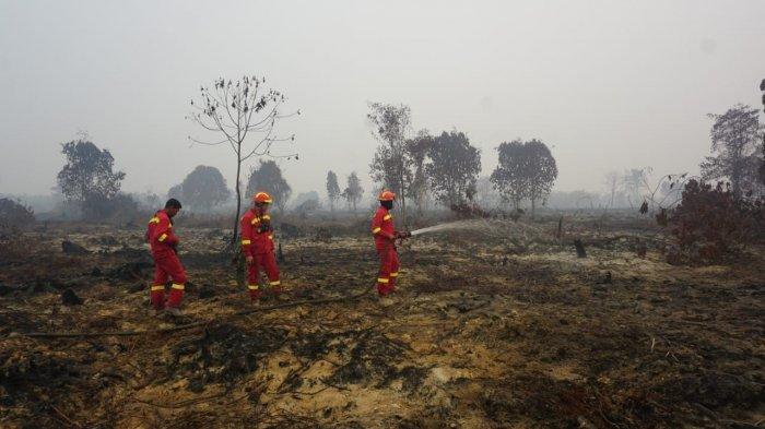 Pemprov Riau Tolak 65 Satgas Karhutla dari DKI, Anies Balas dengan Sindiran: Kami Kirim untuk BNPB