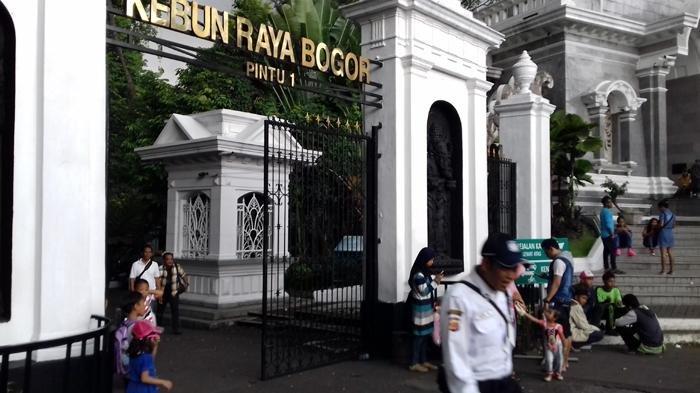 Hotel Murah Di Sekitar Kebun Raya Bogor