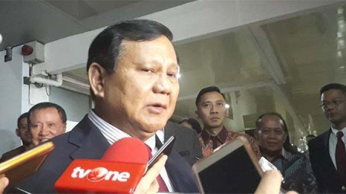 Prabowo Berdiskusi Bareng Caleg Golkar dan Dahnil Anzar, Kehadiran Bobi Si Kucing Jadi Sorotan