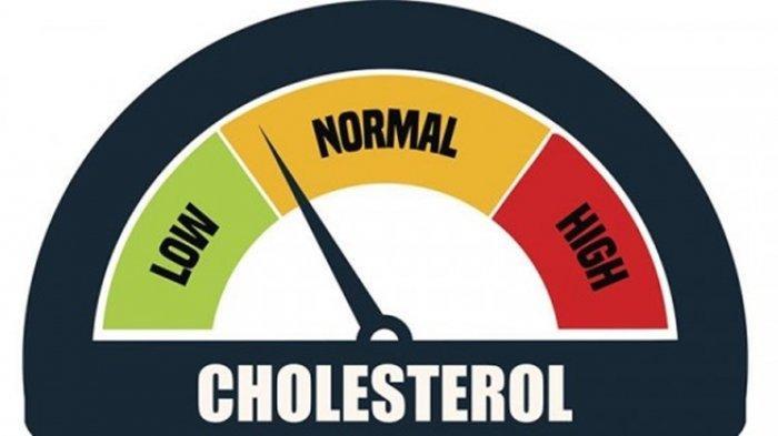 8 Obat Tradisional untuk Menurunkan Kolesterol, Cocok Dikonsumsi Usai Makan Daging saat Lebaran