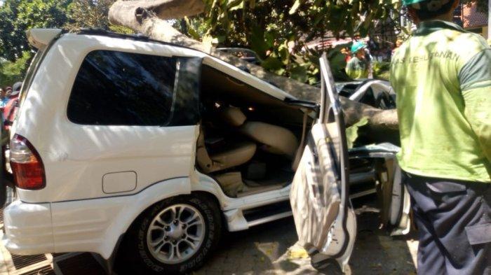 Sebuah Mobil Tertimpa Pohon di Halaman Parkir Universitas Pancasila, Satu Orang Meninggal Dunia