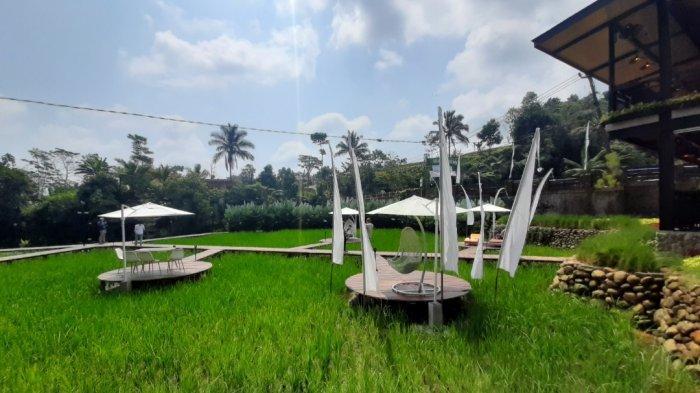 Suasana di Kopi Tubing, Bogor, Jawa Barat. Di sini, traveler bisa menyeruput kopi, sambil menikmati pemandangan alam yang kece khas pedesaan. Ada aliran sungai, sawah, juga dedaunan yang hijau yang asri.