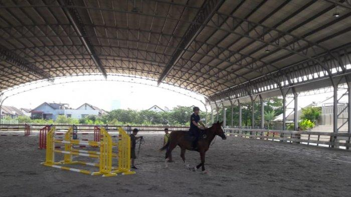 Equestrian Park Pulomas Bakal Kembangbiakan Kuda Eropa