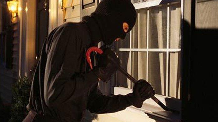 Pemilik Histeris 9 Kerbaunya Dicuri Jelang Idul Adha, Disembelih Lalu Diambil Dagingnya