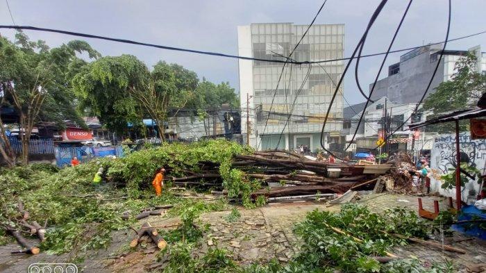 Petugas menangani pohon tumbang akibat angin puting beliung di wilayah Kebayoran Lama, Jakarta Selatan pada Minggu (11/4/2021).