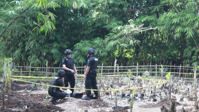 Saat Mencangkul di Kebun, Sumedi Temukan Mortir Aktif Sepanjang Hampir Setengah Meter