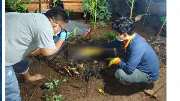 Misteri Penemuan Mayat Bocah SD Tertimbun di Kebun, Terungkap Pelakunya Ternyata Seorang Vloger
