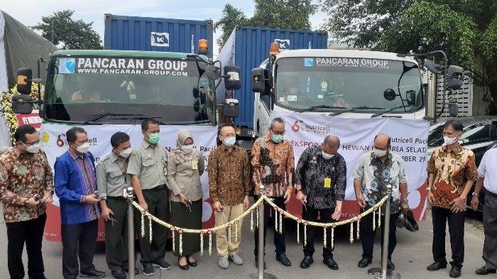 Kementerian Pertanian Genjot Ekspor, 28 Ton Obat Hewan dari Tangsel Dikirim ke Korsel