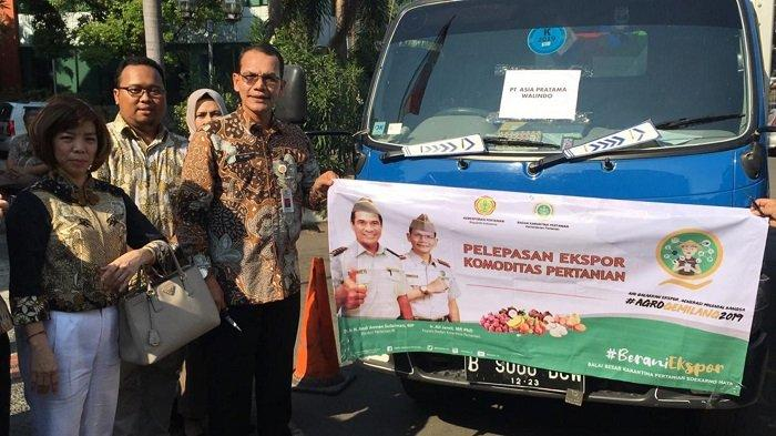 Jamur Susu Harimau dari Banten Menjadi Produk Ekspor Unggulan ke Sejumlah Negara Asia