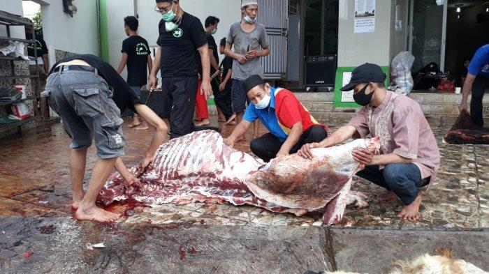 Satpol PP Jakarta Timur Belum Temukan Pemotongan Kurban di Zona Merah Covid-19