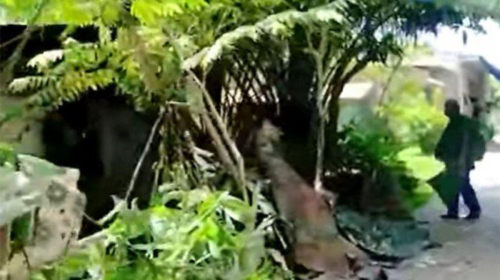 Warga Lingkungan 11, Tanah 600, Medan Marelan, Kota Medan, Selasa (21/7/2021), melihat rumah kumuh Khairuddin Siregar (40), pelaku yang menghabisi nyawa Tatang Suhendar (70), penggali kubur yang tak lain pamannya, pada Senin (20/7/2021) petang.