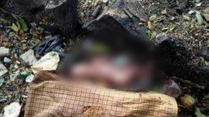 Polisi Belum Temukan Identitas Pembuang Bayi di Selokan Pamulang