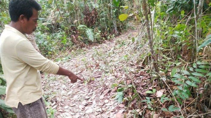 Penemuan mayat bocah perempuan di Nibung Muratara