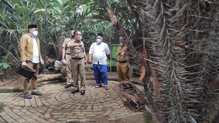 Ribuan Pohon Salak Condet di Balekambang Bakal Dijadikan Daya Tarik Agro Wisata