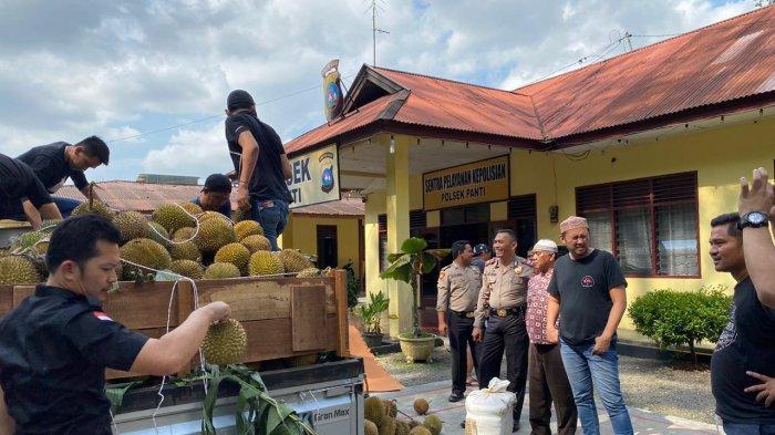 Berawal dari Ganja yang Diselipkan di Truk Durian, Polisi Ungkap 5 Hektare Ladang Ganja