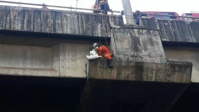 Evakuasi Kucing Terjebak di Tiang Tol, Personel Damkar Merayap di Ketinggian 20 Meter