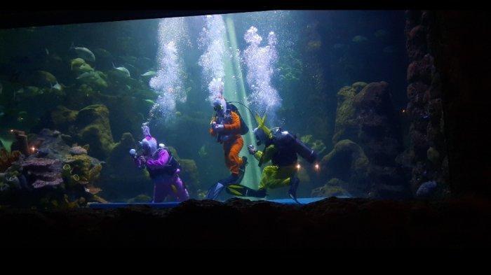 Melihat Atraksi 4 Penyelam di Seaworld Ancol, Kisahkan Gangguan Ekosistem Laut Imbas Sampah Manusia - pertunjukan-di-seaworld-2.jpg