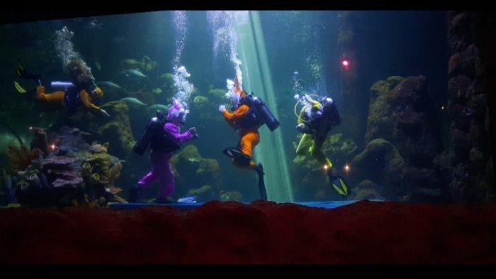 Melihat Atraksi 4 Penyelam di Seaworld Ancol, Kisahkan Gangguan Ekosistem Laut Imbas Sampah Manusia - pertunjukan-di-seaworld.jpg