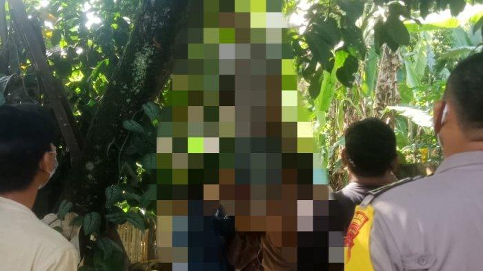 Ditinggal Nikah Sang Kekasih, Remaja di Bogor Nekat Akhiri Hidup Gantung Diri di Pohon Rambutan