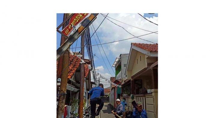Petugas Damkar DKI menyelamatkan burung gereja yang terlilit benang layangan di tiang listrik