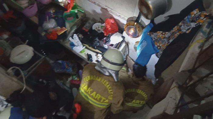 Panik Muncul Ular Koros di Kamar Mandi, Warga Pondok Labu Lapor Petugas Damkar