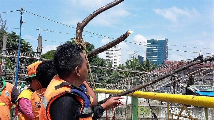 Minimal Angkut 50 Karung, Petugas Kebersihan Kanal Banjir BaratPernah Kumpulkan 100 Karung Sampah