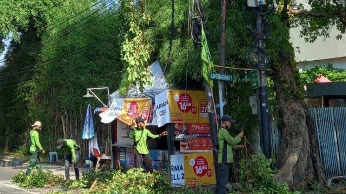 Selama 4 Bulan Terakhir, 325 Pohon Dipangkas Sudin Lingkungan Hidup Kecamatan Gambir