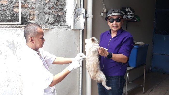 Kenali Tanda Hewan Terkena Rabies dan Cara Pencegahannya