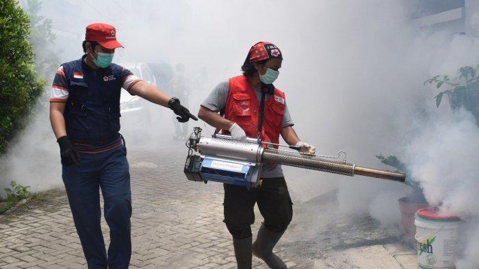Warga Karawaci Kota Tangerang Diserang Demam Berdarah, Gejalanya Mirip Covid-19