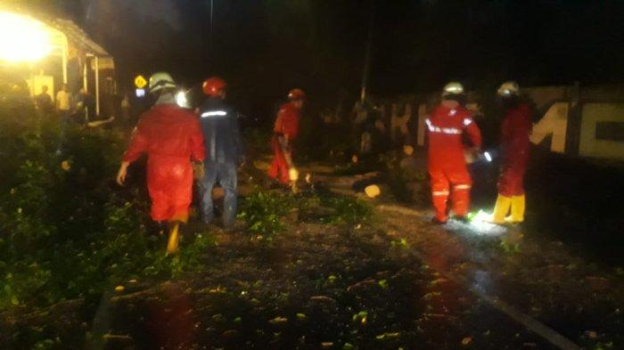 Pohon Kapuk Tumbang di Jakarta Timur, 25 Orang Penghuni Selamat dari Maut