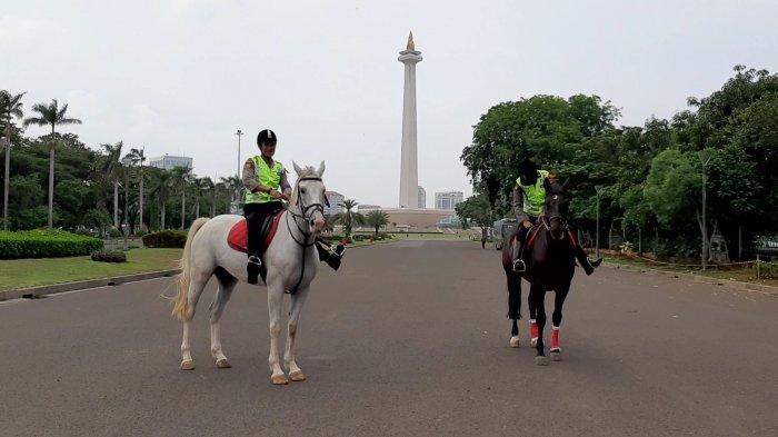 Berfoto dengan Kuda Eropa, Pengunjung Car Free Day Senang: Belum Pernah Lihat