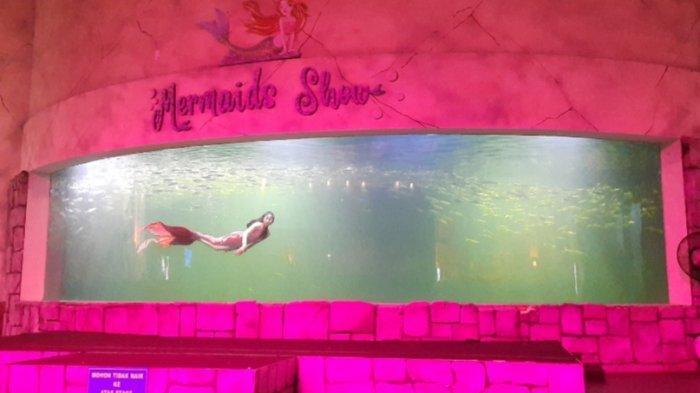 Berkenalan dengan April, Putri Duyung Ocean Dream Samudra, Penyelam yang Jago Menari Balet Dalam Air