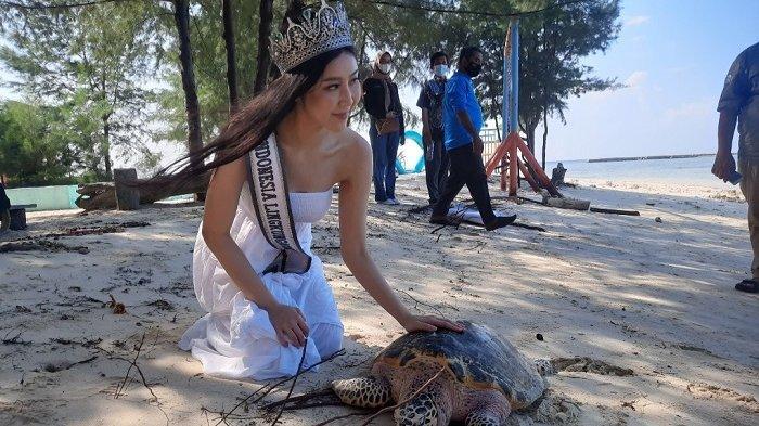 Peringati Hari Lingkungan Hidup Sedunia, Penyu Sisik dan Tukik Dilepasliarkan di Pulau Seribu