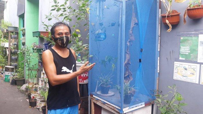 Warga Pancoran Ini Budidaya Maggot di Gang Depan Rumahnya: Si Kilat Pengurai Sampah Organik