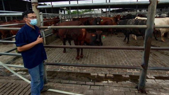 Harga Daging Sapi Meroket, Rumah Jagal Hewan di Tangerang Nihil Aktivitas