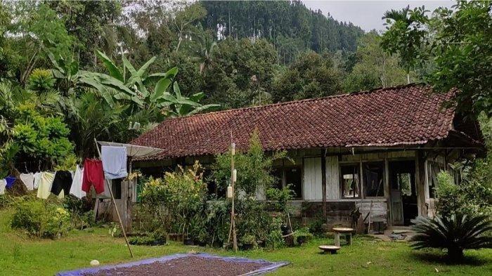 Rumah tua tengah hutan Desa Prigi Kecamatan Sigaluh, Banjarnegara