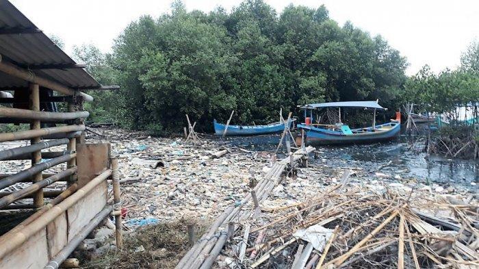 Warga Sebut Tumpukan Sampah di Hutan Mangrove Marunda 3 Bulan Lalu Dibersihkan