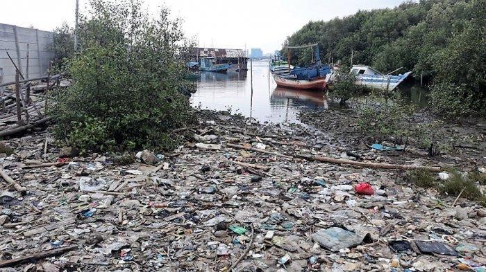 Sampah di Hutan Mangrove Marunda Sulit Dibersihkan Karena Akses Terbatas