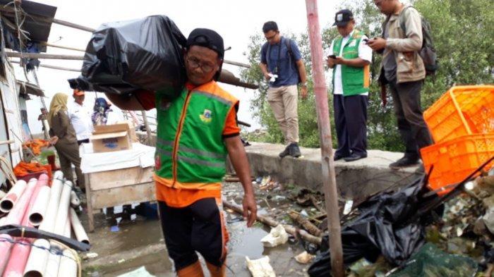 Dibawa ke TPST Bantargebang, Sampah di Hutan Mangrove Marunda Susah Terurai
