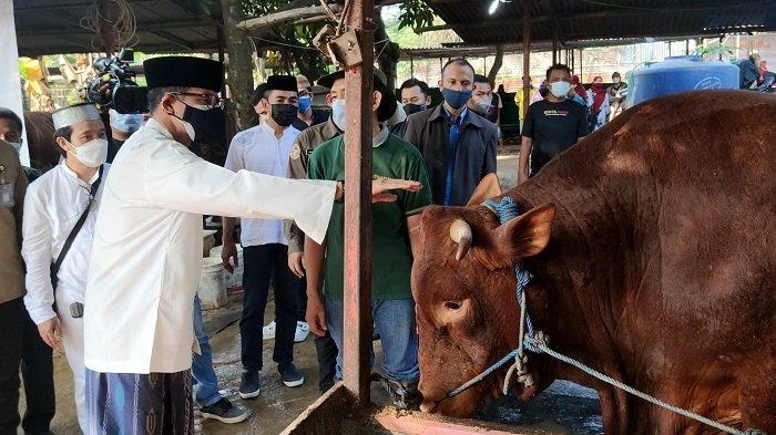 Momen Idul Adha Sandiaga Uno Ajak Masyarakat Tetap Semangat Melawan Covid-19